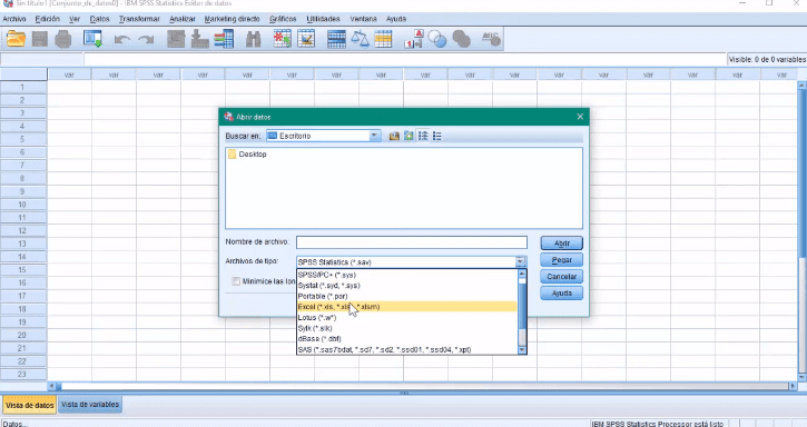 Excel a SPSS paso 2